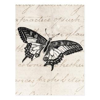 Vintage Butterfly Illustration 1800 s Butterflies Postcards