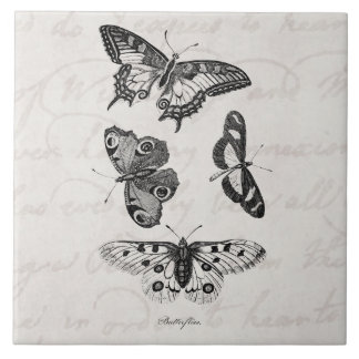 Vintage  Butterfly Illustration 1800s Butterflies Large Square Tile