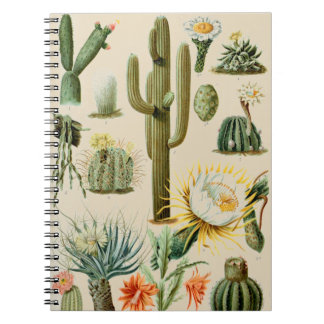 Vintage Cactus   Spiral Notebook