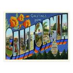 Vintage California Postcard
