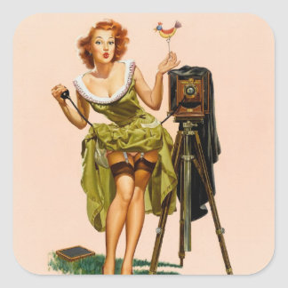Vintage Camera Pinup girl Stickers