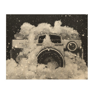 Vintage Camera Snow Storm Wood Wall Decor