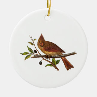 Vintage Cardinal Song Bird Illustration - 1800's Christmas Ornament