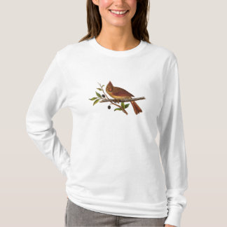Vintage Cardinal Song Bird Illustration - Female T-Shirt