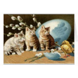 Vintage Cat Easter Greeting Card