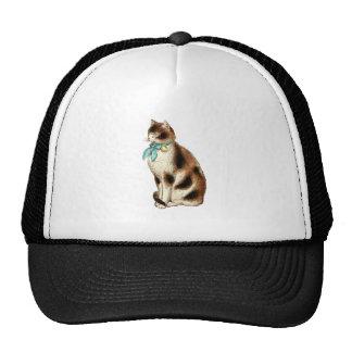 Vintage Cat Illustration Hat