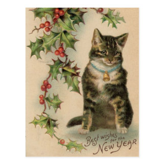 Vintage Cat New Year Christmas Post Card