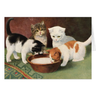Vintage cats and milk card