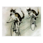 Vintage Cats on Bikes Post Cards