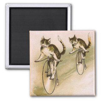 Vintage Cats on Bikes Refrigerator Magnets
