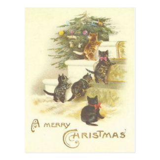 Vintage Cats on Stairs Merry Christmas Post Card