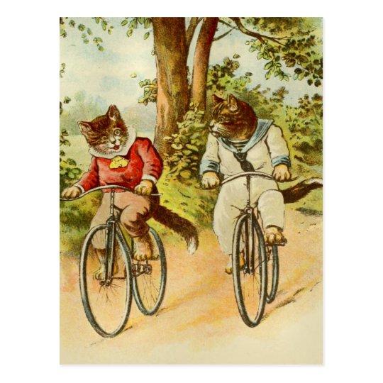 Vintage Cats Riding Bicycles Illustration Postcard