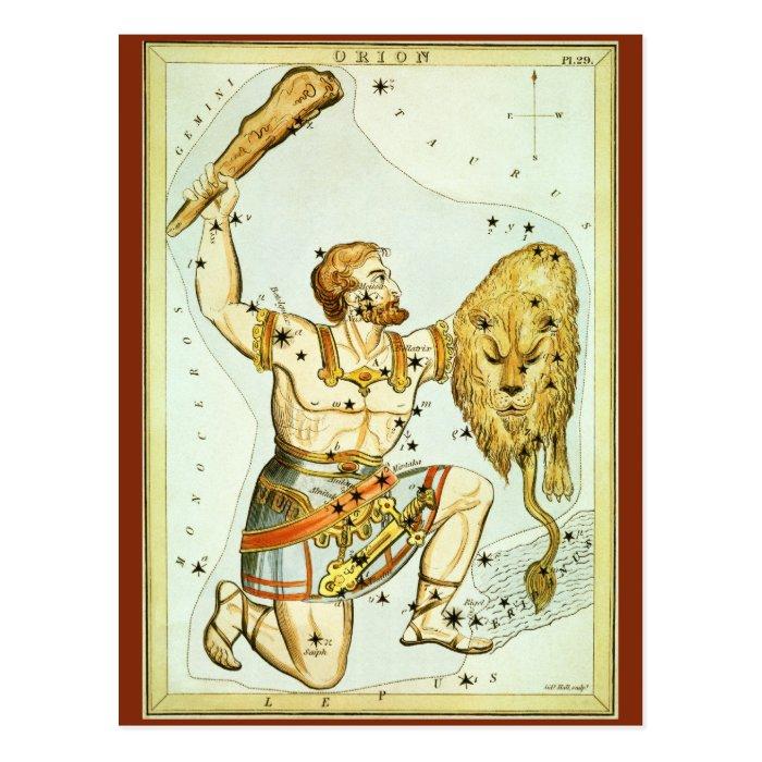 Vintage Celestial Astronomy, Orion Constellation Postcard