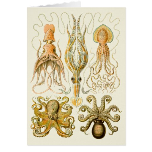 Vintage Cephalopods Greeting Card