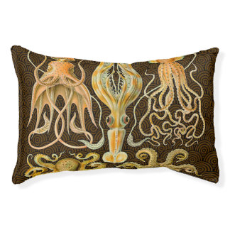 Vintage Cephalopods Squid Octopus Pet Bed