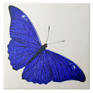 Vintage Cerulean Blue Butterfly 1896 Template Large Square Tile