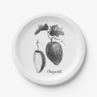 Vintage chayote etching paper plate 7 inch paper plate