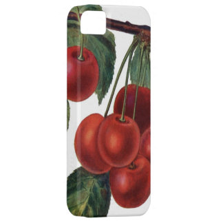 Vintage Cherries Phone Case