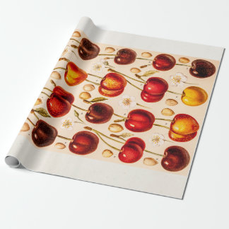 Vintage Cherry Varieties Antique Cherries Fruit Wrapping Paper