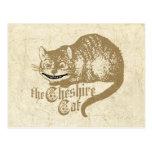 Vintage Cheshire Cat Illustration Post Cards