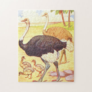 Vintage Childrens Book Illustration Ostrich Puzzle