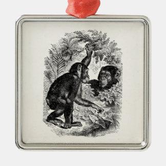 Vintage Chimpanzees 1800s Monkey Chimp Template Christmas Ornament