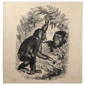 Vintage Chimpanzees 1800s Monkey Chimp Template Napkin