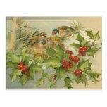 Vintage Christmas Birds Nest Postcard