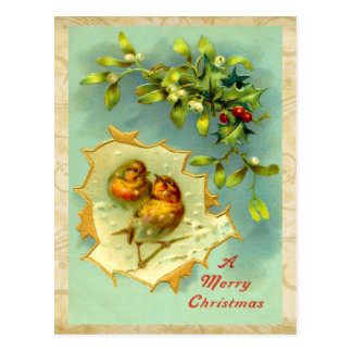 Vintage Christmas Birds Postcard