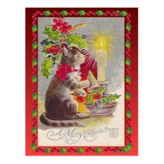Vintage Christmas,  Christmas cat Postcard