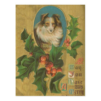 Vintage Christmas Collie Postcard