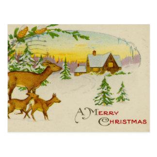 Vintage Christmas Deer Postcard