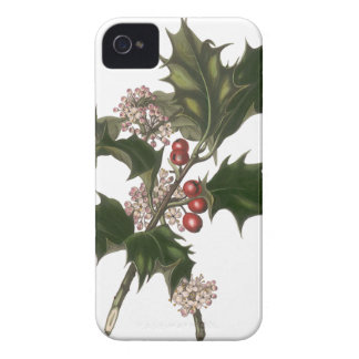 Vintage Christmas, Green Holly Plant with Berries iPhone 4 Case-Mate Cases