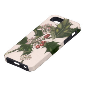 Vintage Christmas, Holly and Berries iPhone 5 Cases