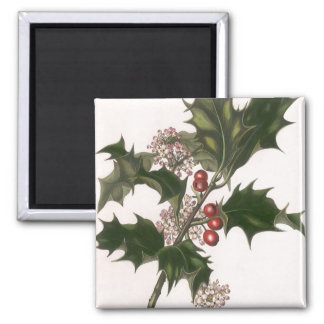 Vintage Christmas Holly and Berries Magnets