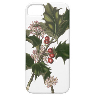Vintage Christmas, Holly Plant with Red Berries iPhone 5/5S Cases