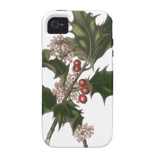 Vintage Christmas, Holly Plant with Red Berries iPhone 4 Cases