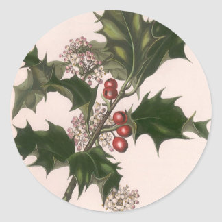 Vintage Christmas, Holly Plant with Red Berries Round Sticker