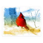 vintage christmas snow red cardinal postcard