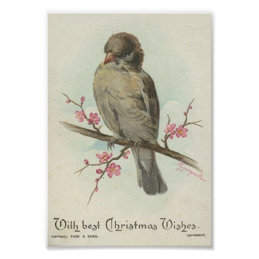 Vintage Christmas Sparrow Poster