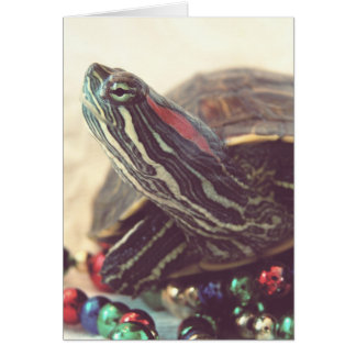 Vintage Christmas Turtle Greeting Card