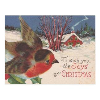 Vintage Christmas Winter Bird Postcard