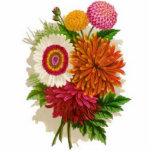 Vintage Chrysanthemums