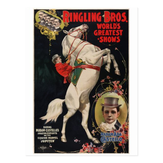 Vintage Circus Animal Act Promotional Postcard