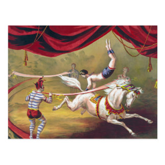 Vintage Circus Art Post Card