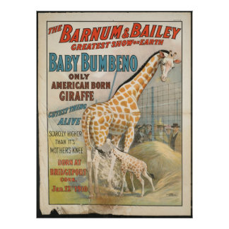 Vintage : circus Barnum & Bailey - Poster