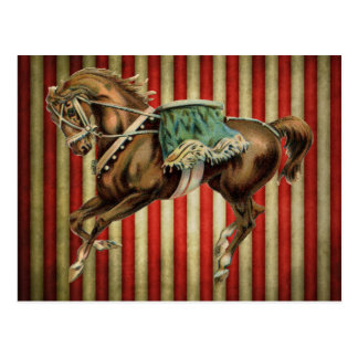vintage circus horse post card