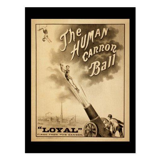 Vintage Circus Poster Human Canon Ball circa 1879 Postcard