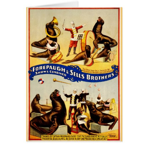 Vintage Circus - Sea Lions and Seals Greeting Cards