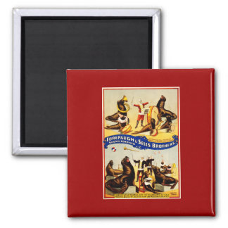 Vintage Circus - Sea Lions and Seals Magnet